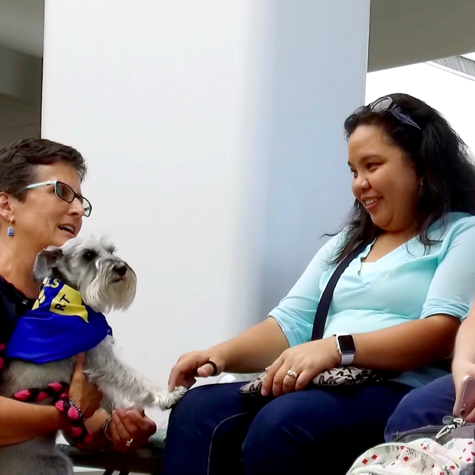 therapy dog greets passengers at RST